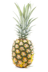 Whole pineapple. Pineapple in white studio background. Sweet delicious mellow tropical fruit. Full whole yellow pineapple. Tropical fruit.