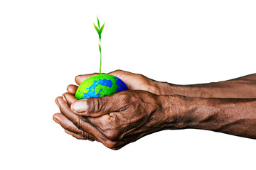 earth in hands. plant in hand. save the world