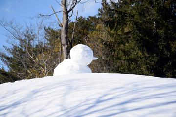 Faceless snowman.