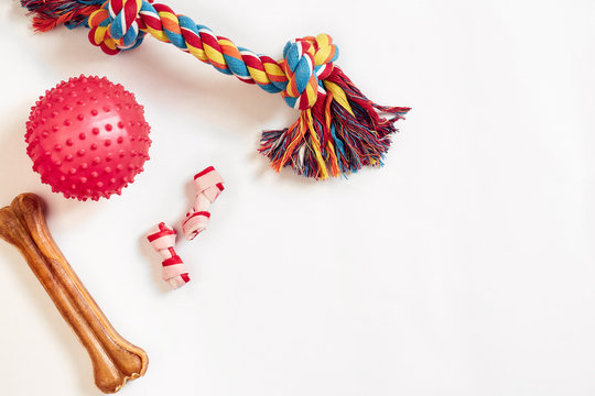 Dog toys set: colorful cotton dog toy and pink ball on a white background