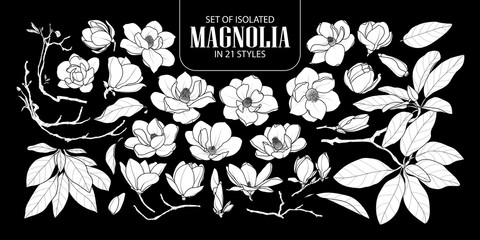 Set of isolated white silhouette magnolia in 21 styles. Cute hand drawn flower vector illustration in white plane and no outline.