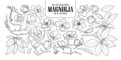 Set of isolated magnolia in 21 styles. Cute hand drawn flower vector illustration in black outline and white plane.