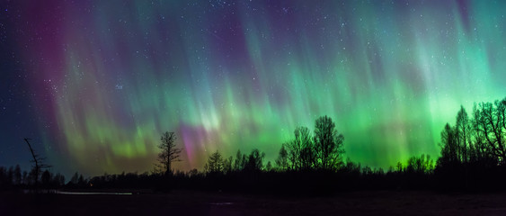 Northern Lights pillars in sky