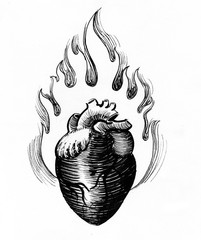 Burning heart. Black and white ink drawing