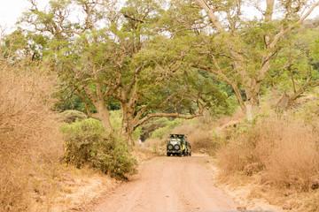 Open roof 4x4 safari caron african wildlife safari in Lake Manyara, Tanzania