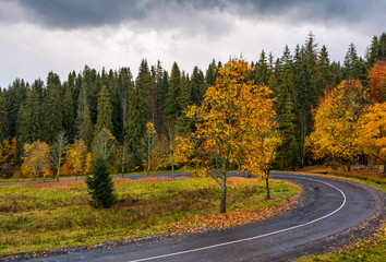 turnaround of the forest road. beautiful autumn nature scenery with cloudy sky