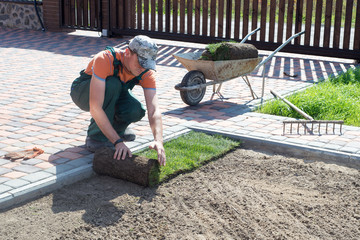 Aluminium Prints Dark grey Landscape Gardener Laying Turf For New Lawn