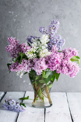Photo sur Toile Lilac lilac branches in a glass vase on a gray background