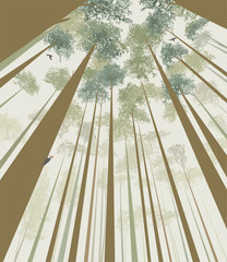 Trees pierce the sky