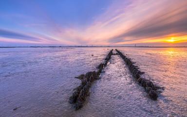 Wall Mural - Tidal marsh mud flats land reclamation