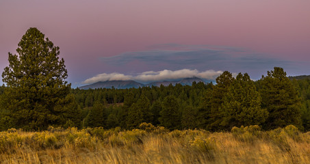 San Francisco Peaks Sunset: A Dark Forest