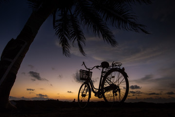 Bicycle on the beach near palm trees and ocean at sunset