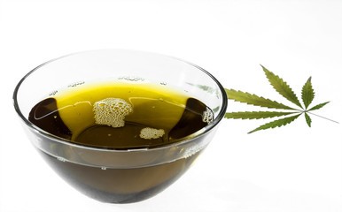 Hemp oil in a glass bowl with a marijuana leaf. Isolated on white background. Selective focus.