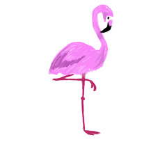 Pink hand drawn exotic flamingo