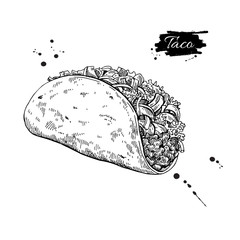 Taco drawing. Traditional mexican food vector illustration. Hand