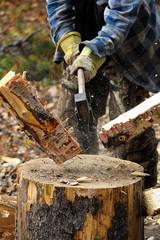 Closeup of birch wood being chopped on a stump