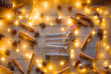 Shopping cart and Christmas lights