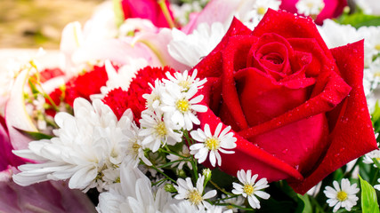 Red rose and flower in bouquet./ Red rose and flower in bouquet on Valentine day.