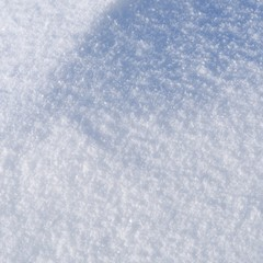 Snow background. Winter nature texture.