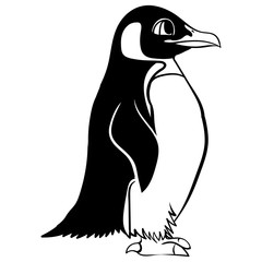 Cartoon linear paint draw penguin vector