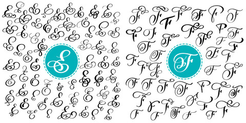 Set letter E, F. Hand drawn vector flourish calligraphy. Script font. Isolated letters written with ink. Handwritten brush style. Hand lettering for logos packaging design poster.