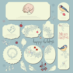 Set of different labels with winter forest birds. Template for season and Christmas design, greeting cards,invitations and decoration.