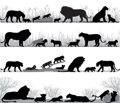 Silhouettes of lions and lion cubs outdoors