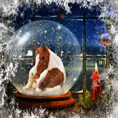 Pinto Mustang in a Snowglobe