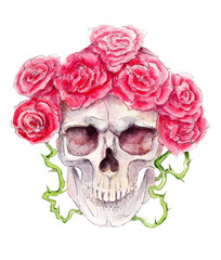 Skull with roses, Halloween watercolor illustration, isolated objects on white background.