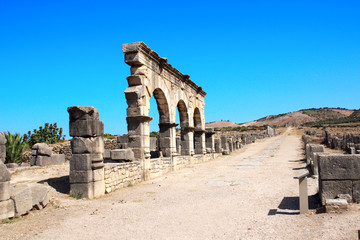 Arch and columns on Decumanus Maximus Street, Volubilis, Morocco