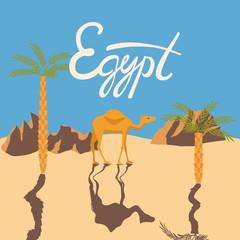 camel in a desery. egypt lettering