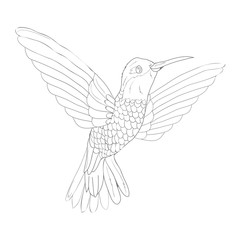 Bird vector sketch icon isolated on background. Hand drawn Bird icon. Bird sketch icon for infographic, website or app.