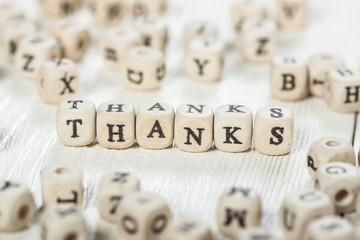Thanks word written on wood block.