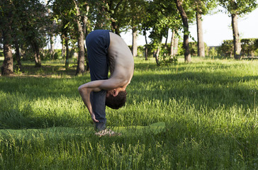 practice of yoga and gymnastics. young man in the park