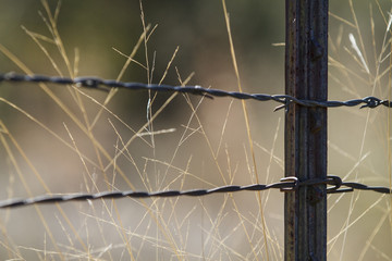 Ranch life background with barbed wire fence grid