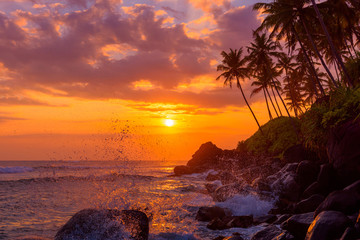 Search Photos Ocean Sunset