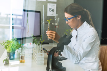 Biologist doing tests with plants
