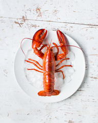 Boiled lobster on a plate