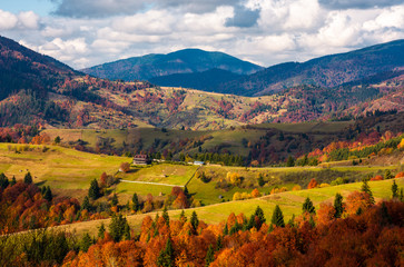 forested rural area on rolling hills in autumn