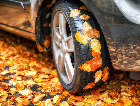 Autumn leaves on tire of car