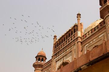 Fassade mit Vögeln