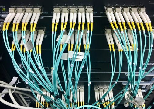 Fiber optic cables with connectors in group
