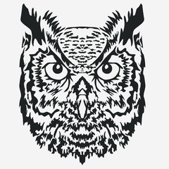 Owl Mascot head, Character Illustration. vector
