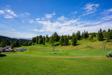Alpine green valley at summer sunny day. Dolomites Alps, Rosengarden Group, South Tirol, Italy.