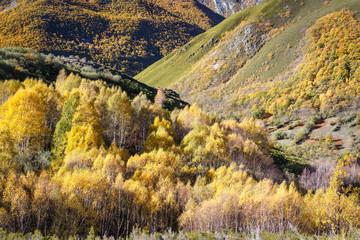 Valle en otoño. Espacio Natural Sierra de Los Ancares.