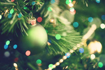 Christmas tree close-up