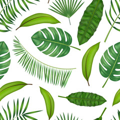 Realistic Detailed Green Leaves of Plants Background Pattern. Vector