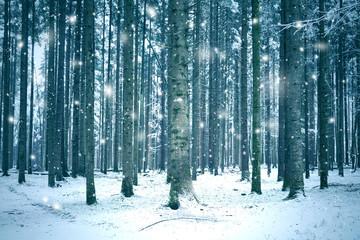 Zelfklevend Fotobehang Groen blauw Winter season forest landscape with abstract snowflakes.