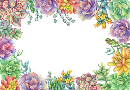 Green floral square frame with leaves, succulent. Succulents collection. Watercolor hand drawn painting illustration isolated on white background.