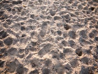 beach sand dunes floor texture background outside